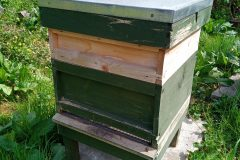 We also have a few bee hives producing local honey