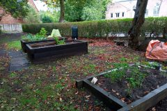 Part of the garden 2